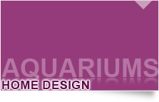 AQUARIUMS HOME DESIGN